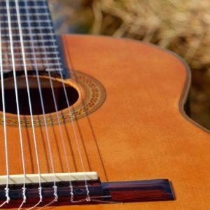 Frick: Gitarrenkurs Im SoKuGarten